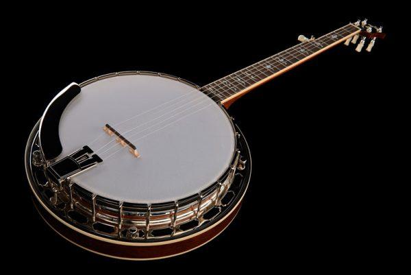 Recensione banjo Recording King RK-R35-BR